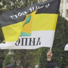 В Липецке Русский Марш закончился задержаниями