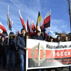 Резолюция Русский Марш Тула 2015