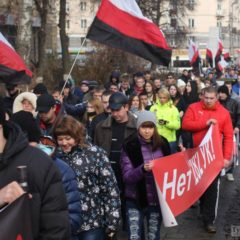 Горюнов: Русский Марш — это Русское Национальное Движение