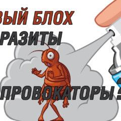 Представители оргкомитета Русский Марш 2018 о провокаторах из т.н. Правого блока